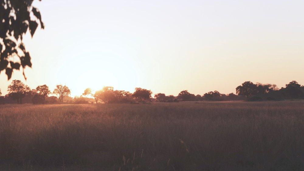 africanriversafari35.jpg