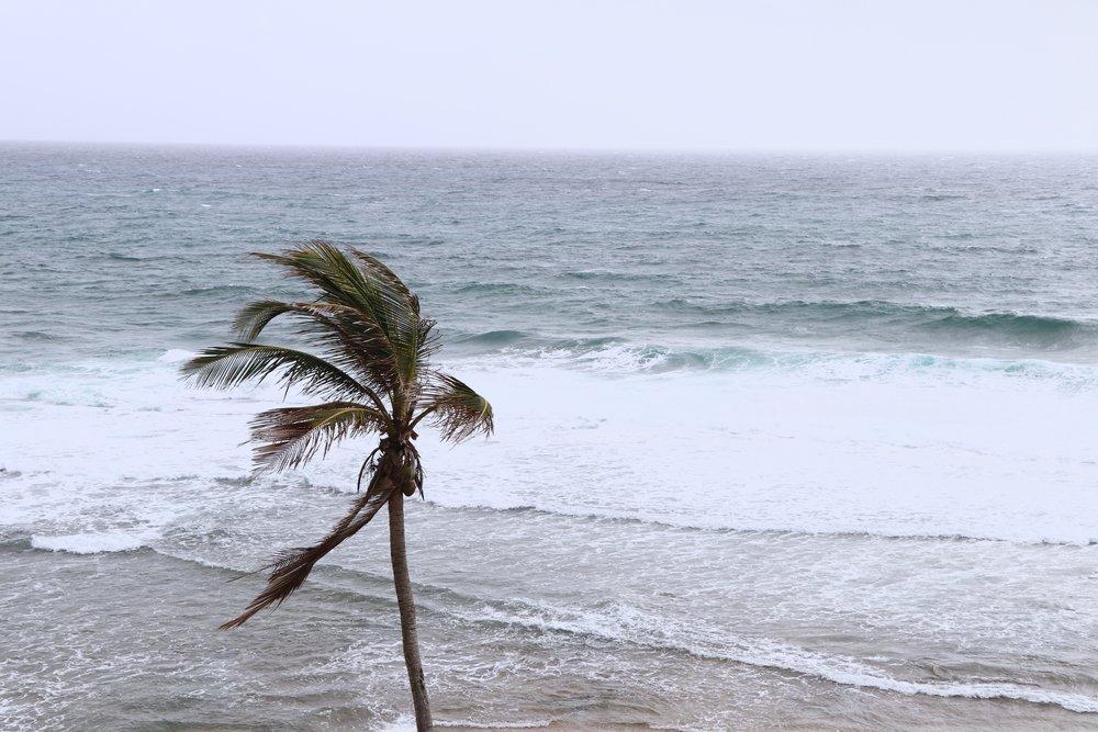 Barbados10.jpg