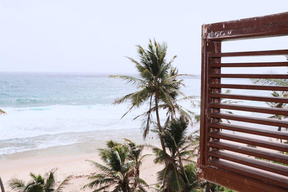 Barbados14.jpg
