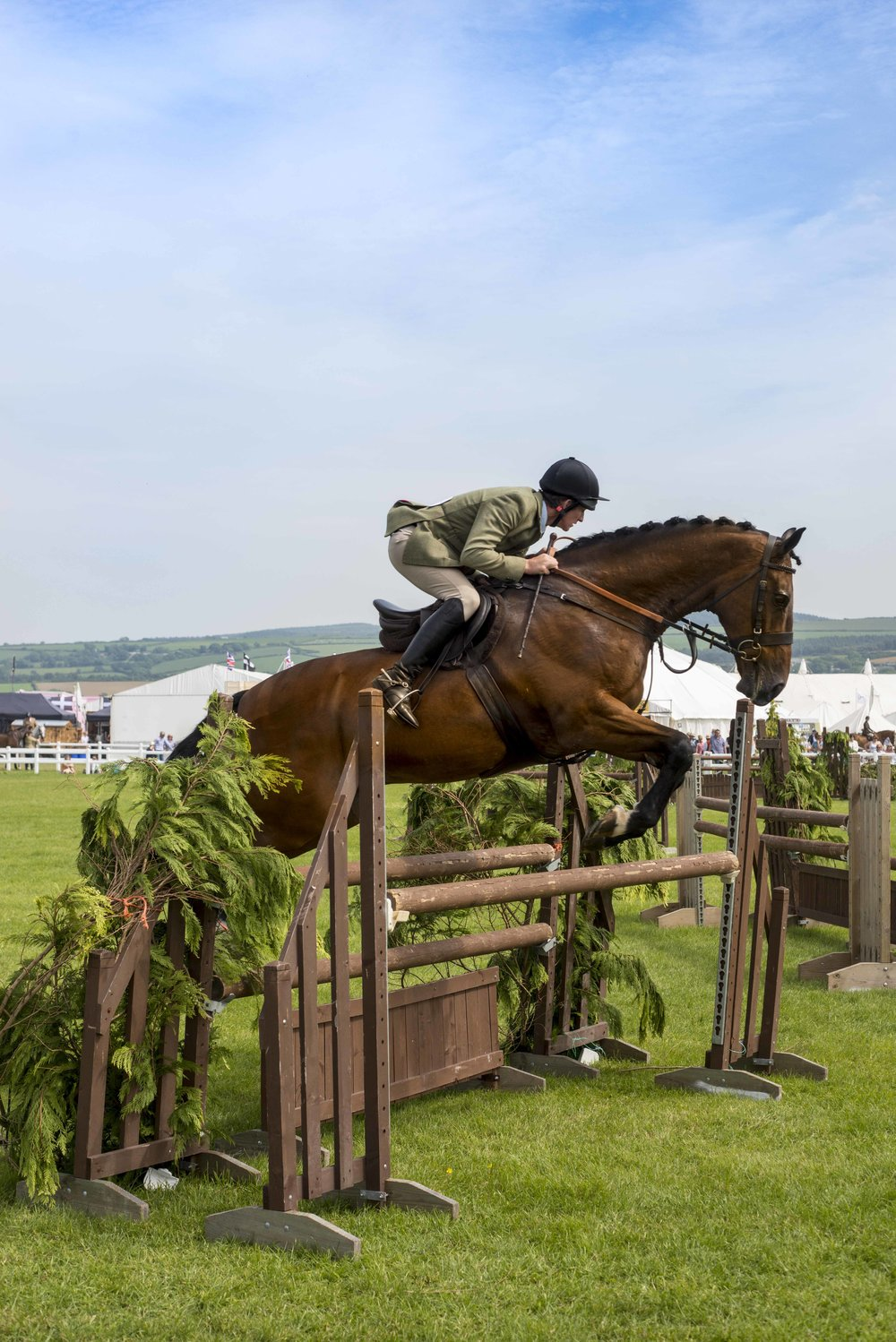 7. Show Jumping, Royal Cornwall Show.jpg
