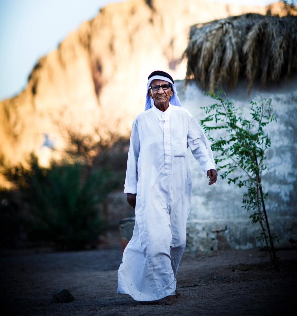 Sheikh Ali Music
