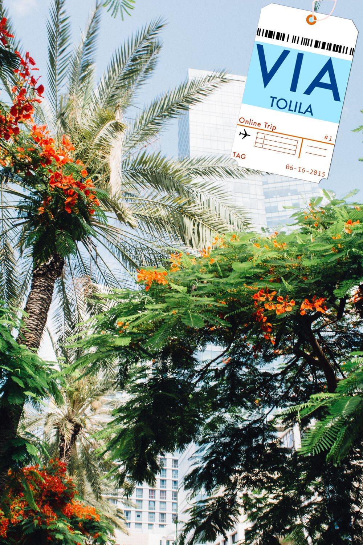 Online destination - VIA TOLILA