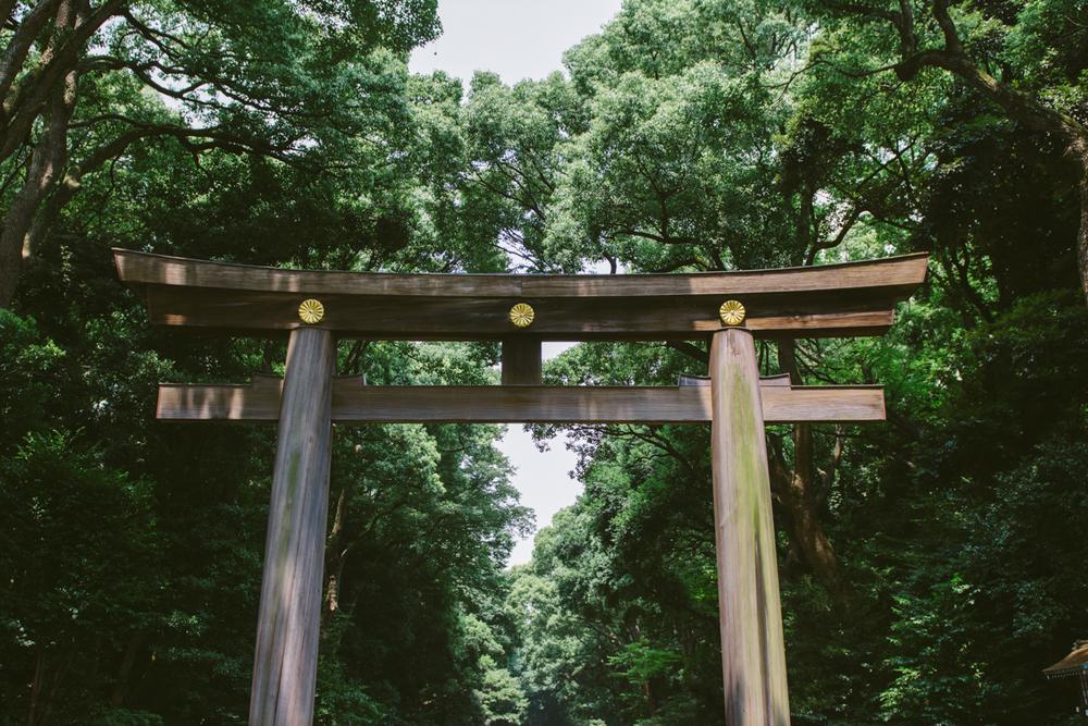 JAPAN - TOKYO - TEMPLE