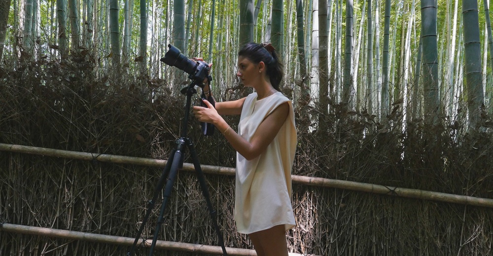 Filming through the Bamboo forest.
