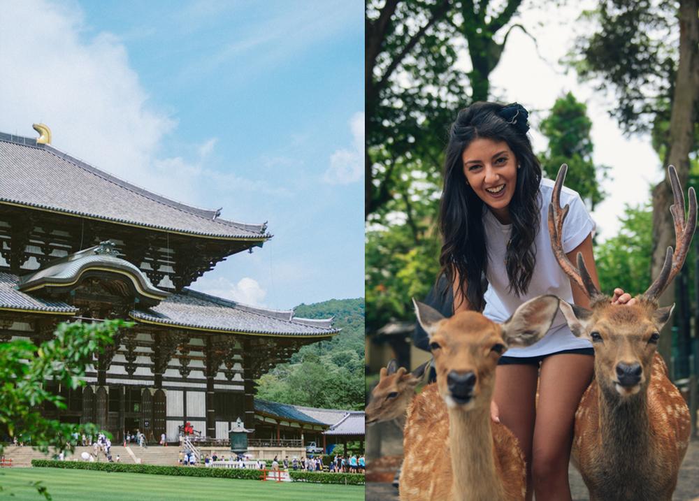 Nara Prefecture - Todai-Ji temple.