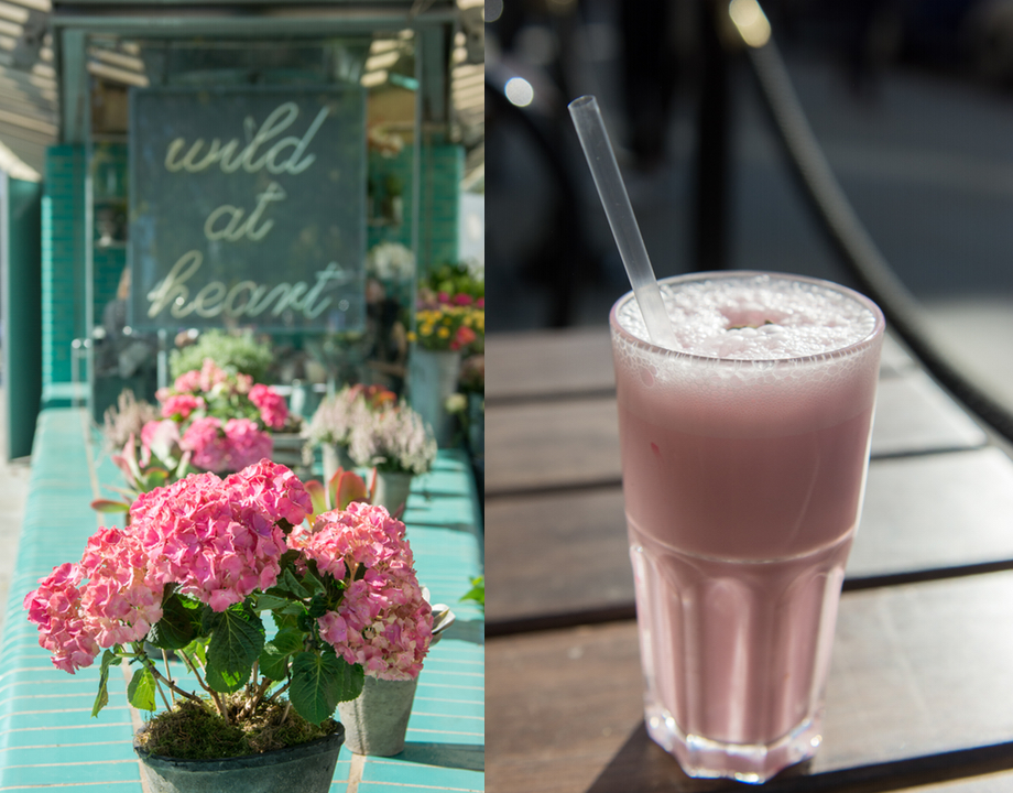 Pink Hydrangeas and Rose Lassi.