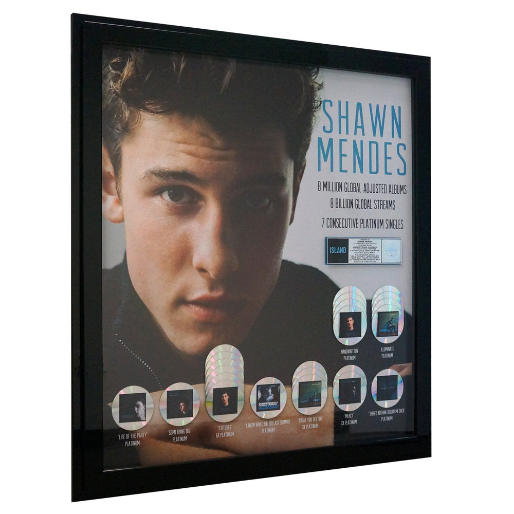 Shawn Mendes large plaque.jpg