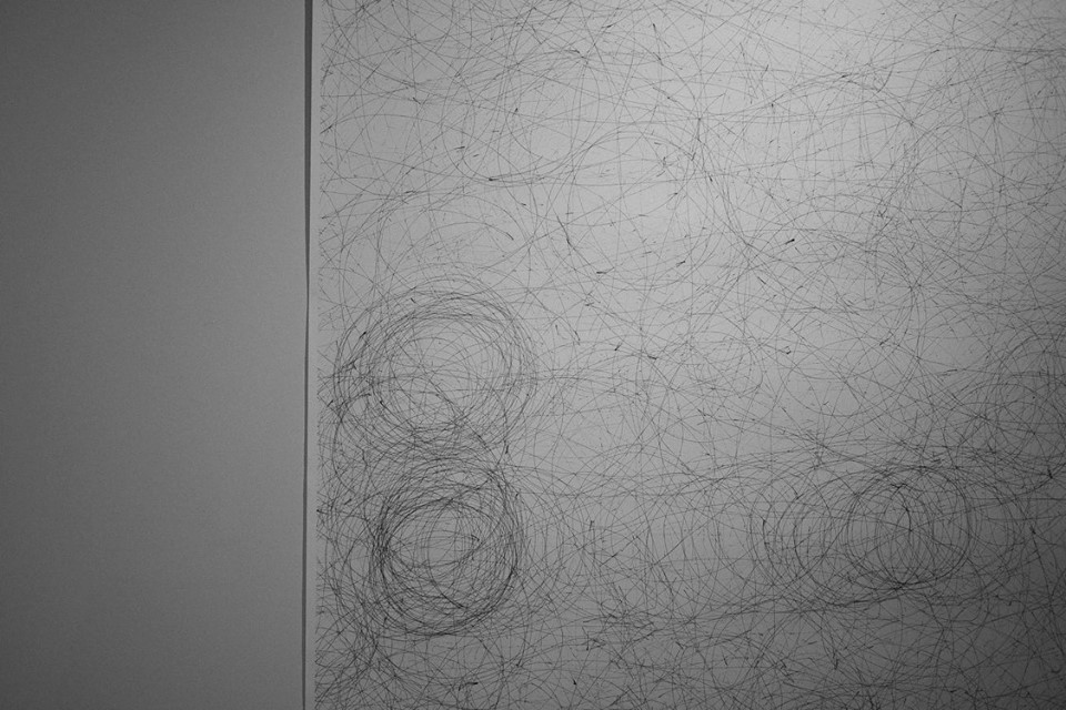 Gregory Stock  'Bump 'n Turn Drawing 5 (detail)'  Ink on paper  329 x 150 cm  Installation view (image courtesy of Carl Jacobs)
