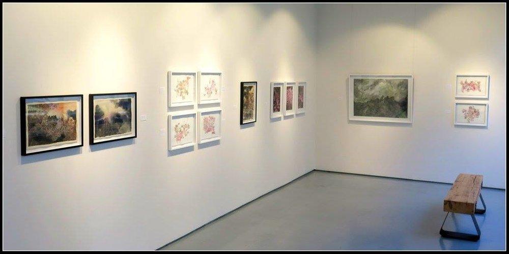 Isabella Kuijers installation shot  Image courtesy of Basil Brady