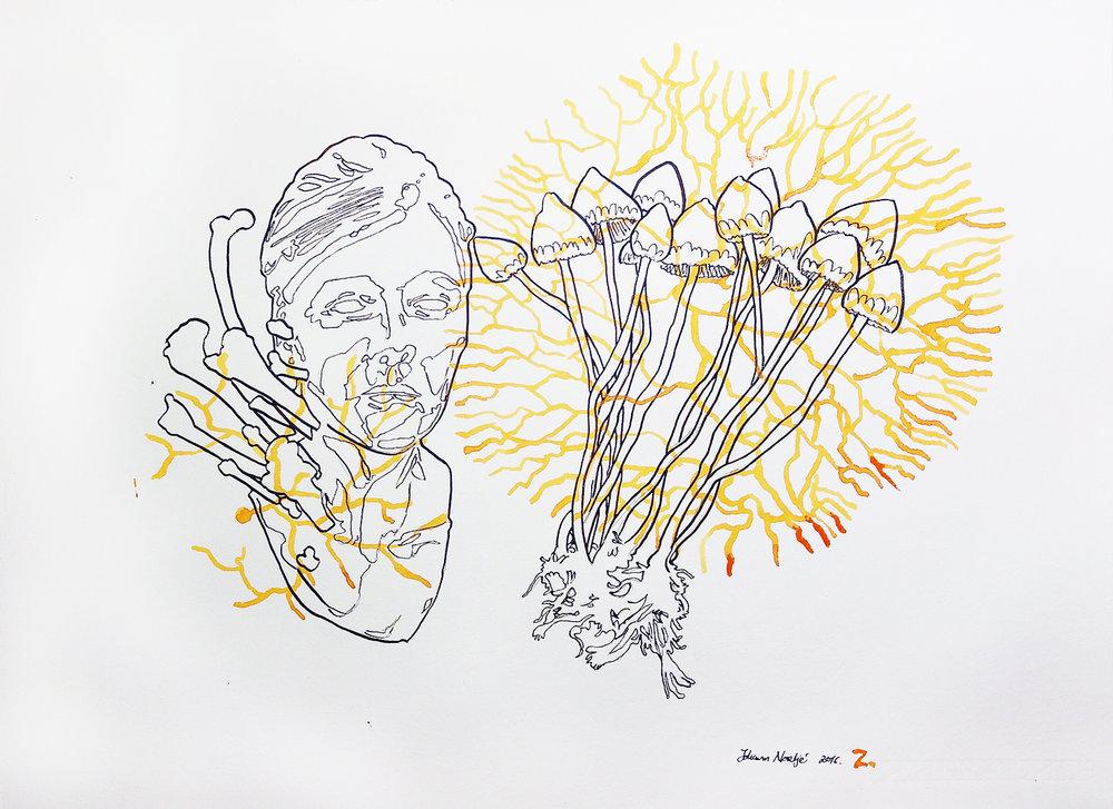 Johann Nortje  Z  Acrylic ink on Hahnemühle  39 x 54 cm