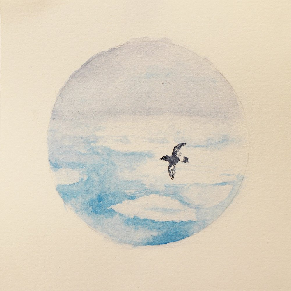 Katrine Claassens  Impressions of the Southern Ocean 19  Melted Antarctic sea ice and watercolour  10 x 10 cm