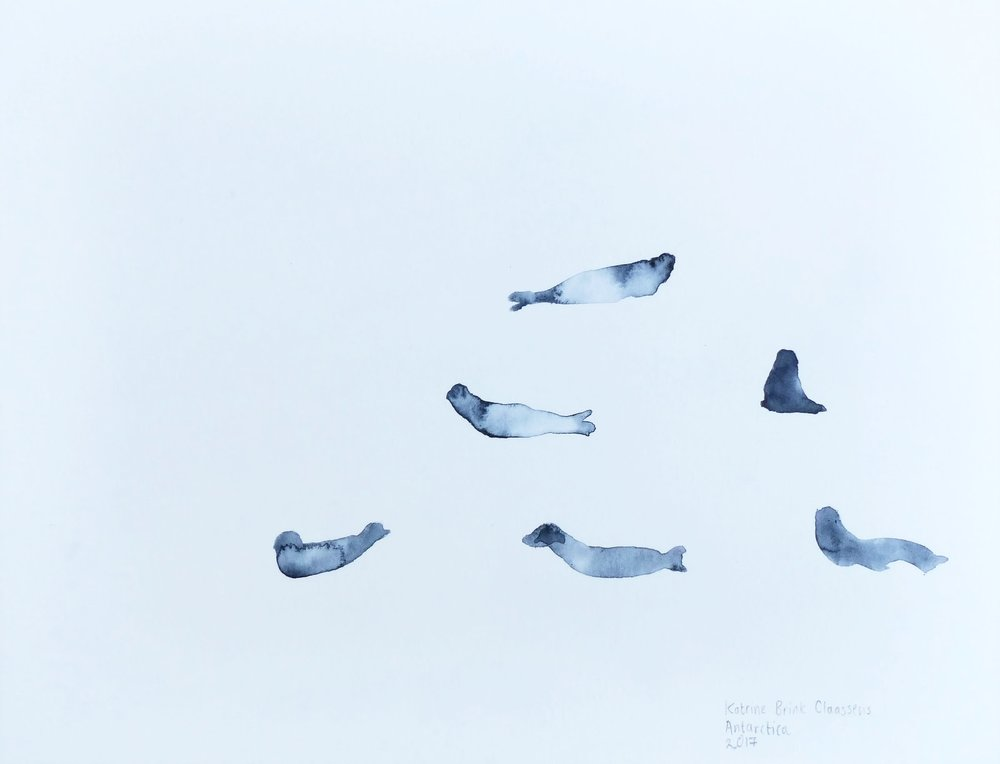 Katrine Claassens  'Phantom Seals'  Melted Antarctic sea ice and watercolour on paper  18 x 13 cm