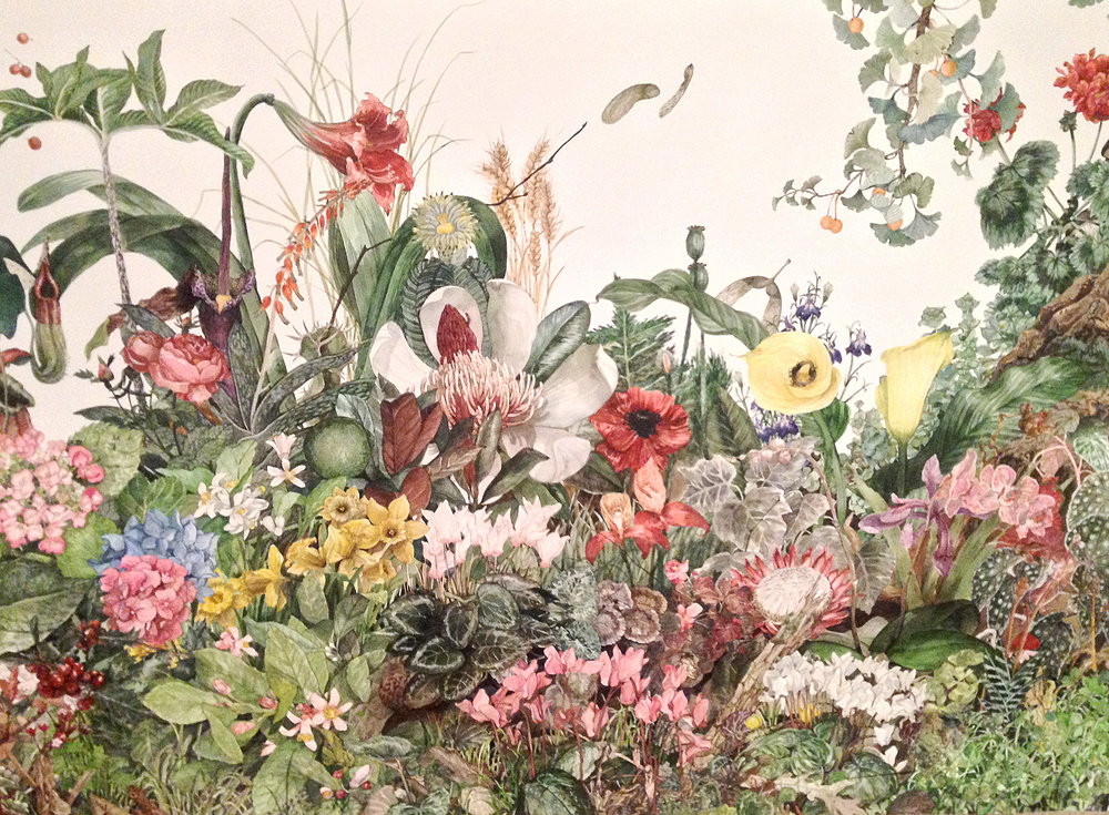 Isabella Kuijers  Cryptobotany  Watercolour on paper  74.5 x 104 cm