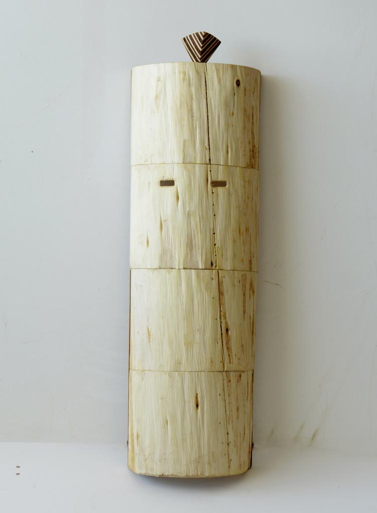 Allen Laing  Coniferous Columnar Concealer  Various Woods