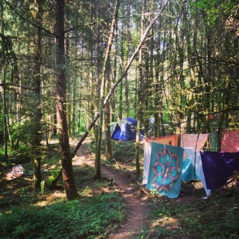 Camp .jpg