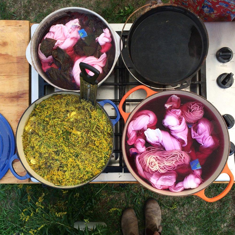 Celebrating Abundance At Dig In Farm—Kate Weiner