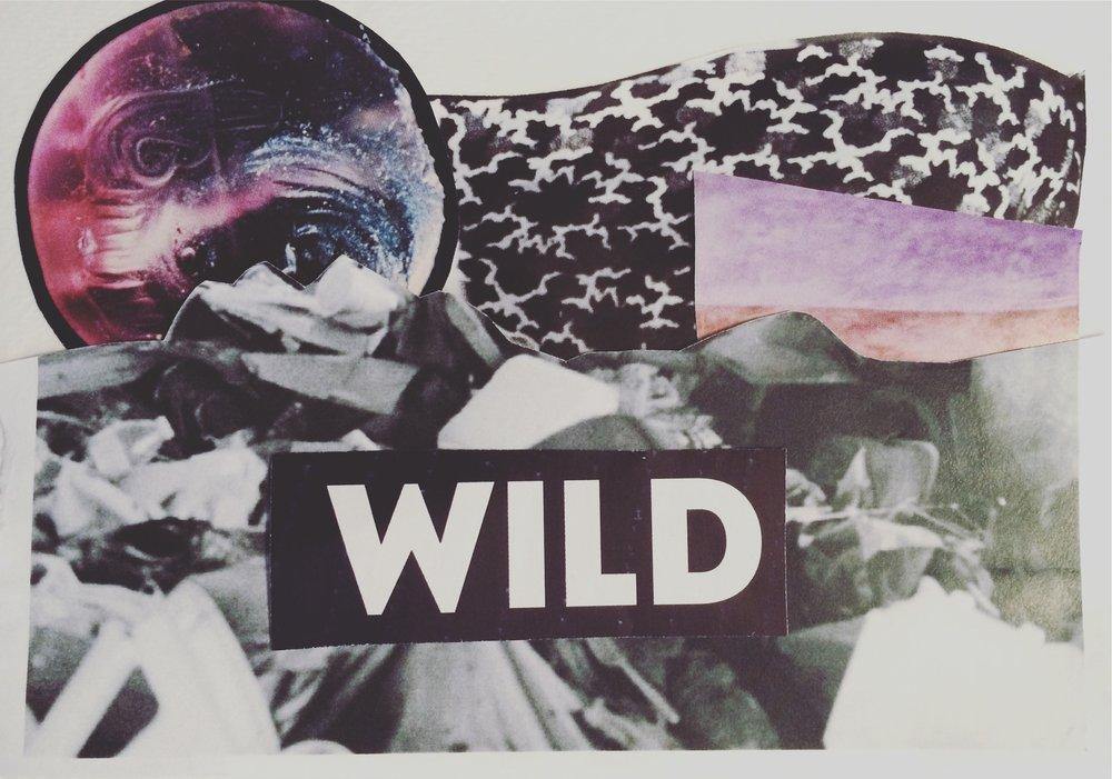 Wild Collage.jpg
