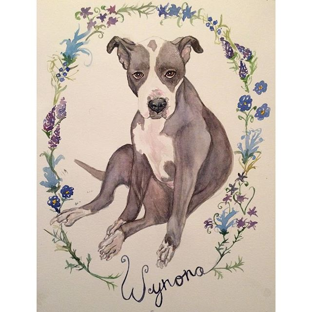 I had the opportunity to create this portrait for @hibernaculum last week. Wynona was a treat to paint. It can be so hard to start painting, but once I start, it's hard to stop. Message me if you're interested in a portrait of your pet!
