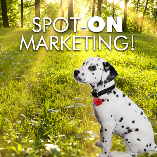 Spot-on Marketing by Dion Marketing Company