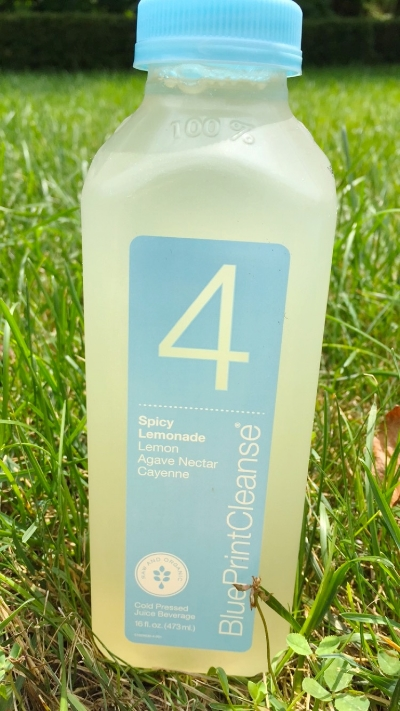 Blueprint cleanse just kale it juice 4 lemon agave and cayenne pepper malvernweather Choice Image