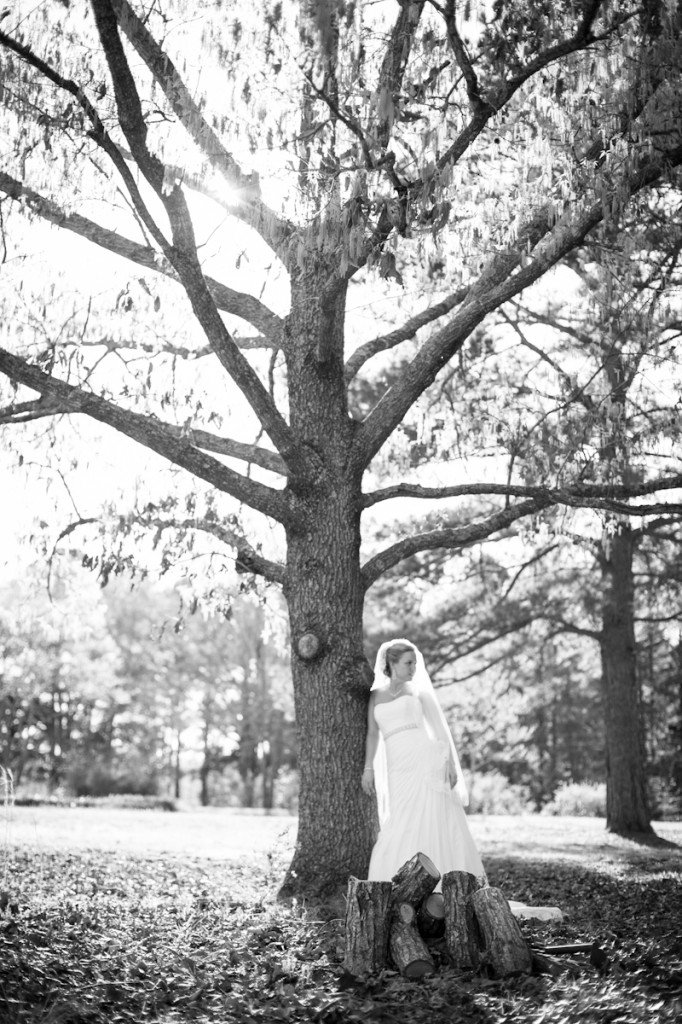 Bridal_Louisiana_tree_ClaireElysePhotography