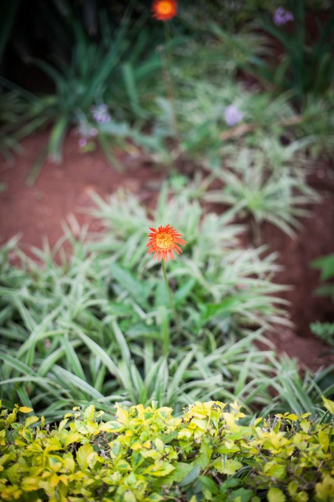 ClaireElysePhotography_Rwanda_HumanitarianPhotography-8278