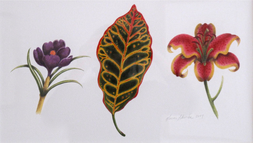 Susan Skoorka, Botanical Trio
