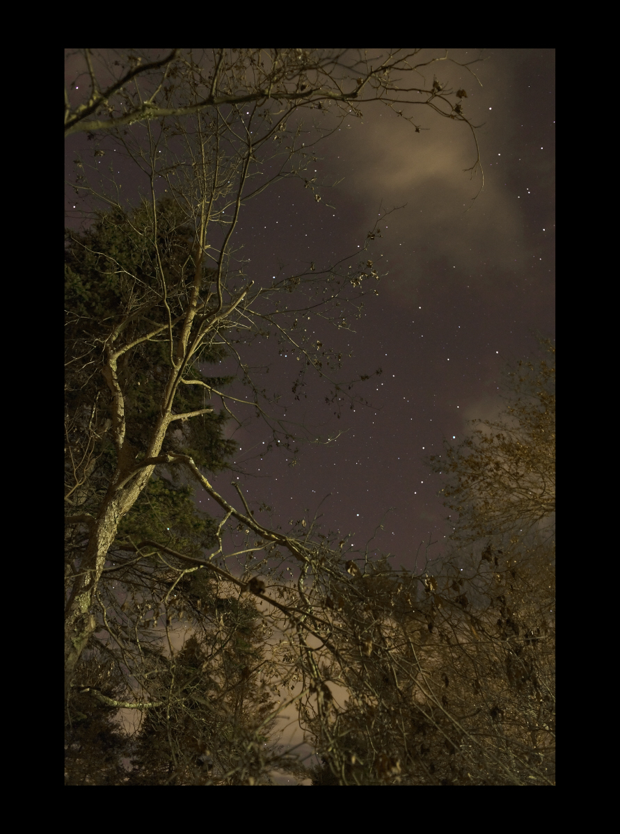 "#8023 Trees, Stars, Clouds, Bedford, NY, 2011, 44""x60"""