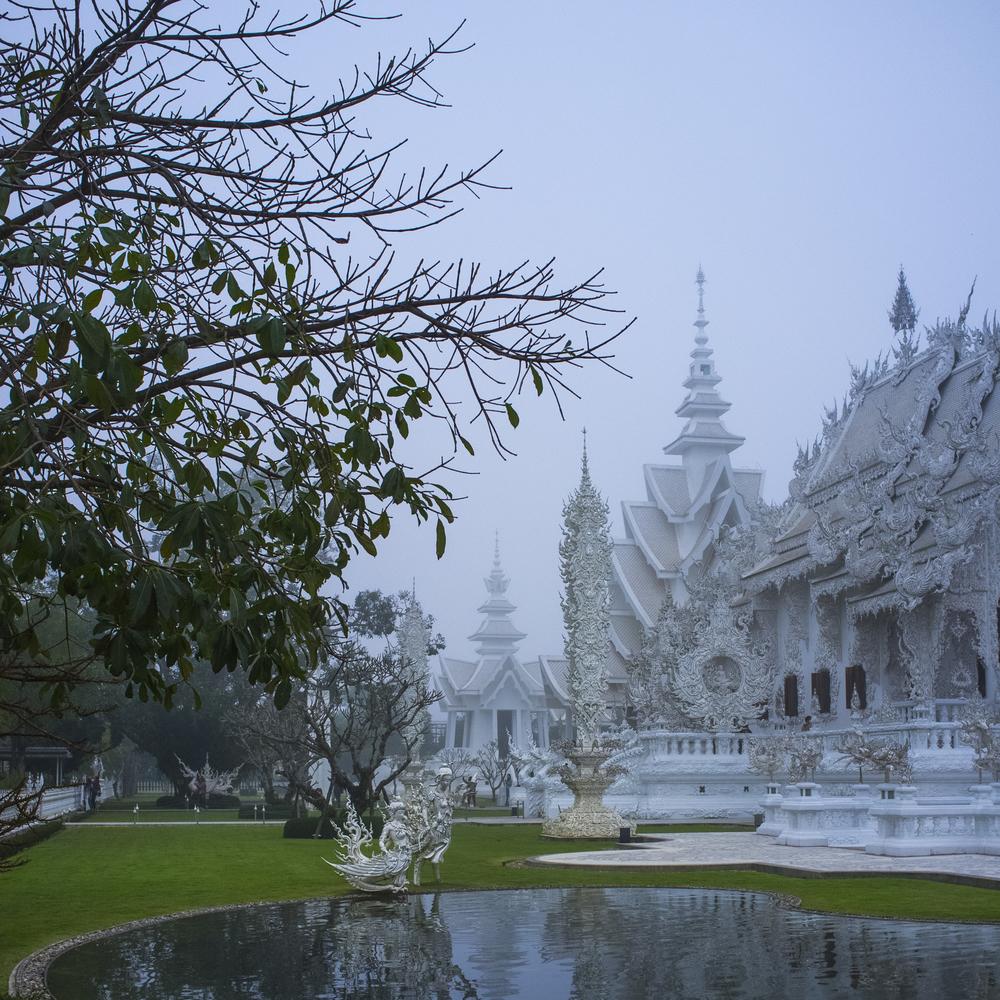 Petitt_Thailand_24x24.jpg