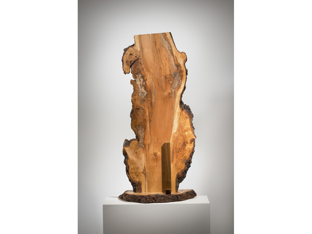 "Imagination, burled maple and gold paint, 37"" x 18"" x 8"", 2015"