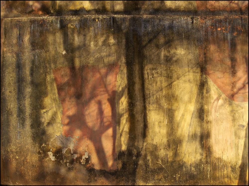 """In my dreams""  Shadows on a wall"