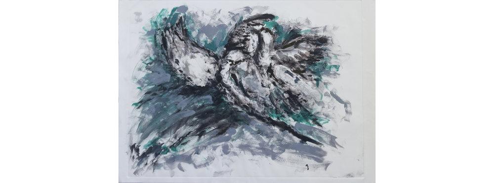 bird-1_170827_5608, website.jpg