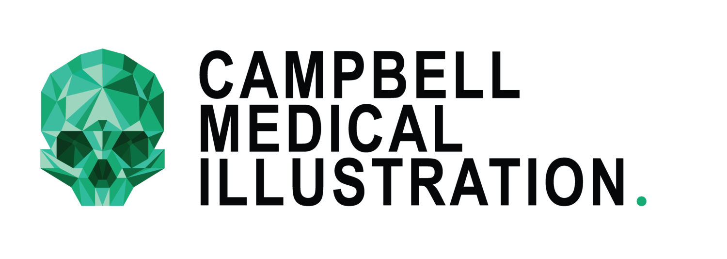 Campbell Medical Illustration