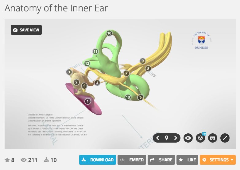 3d Interactive Model Of The Inner Ear Anatomy Campbell Medical