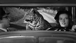 A baby leopard traveling in a car is rather memorable.