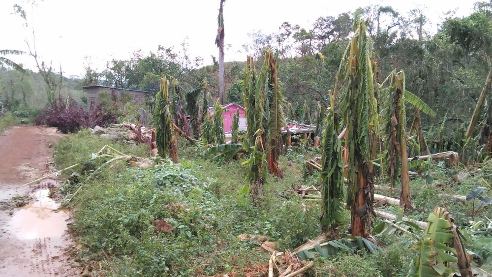 Somewhere in Southern Haiti after Hurricane Matthew