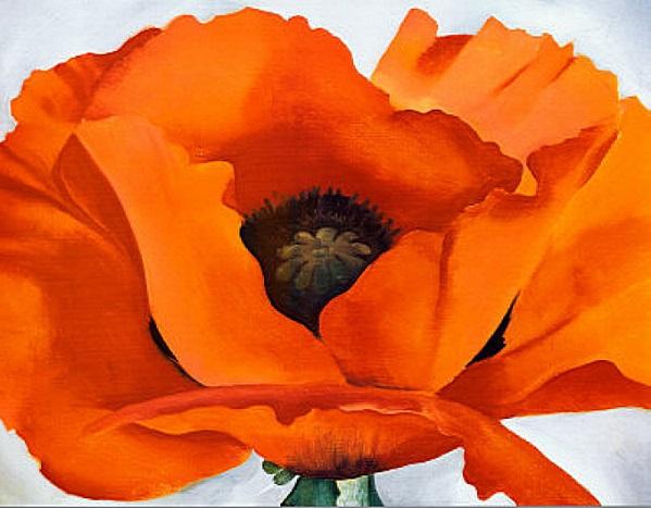 O'Keefe - Red Poppy