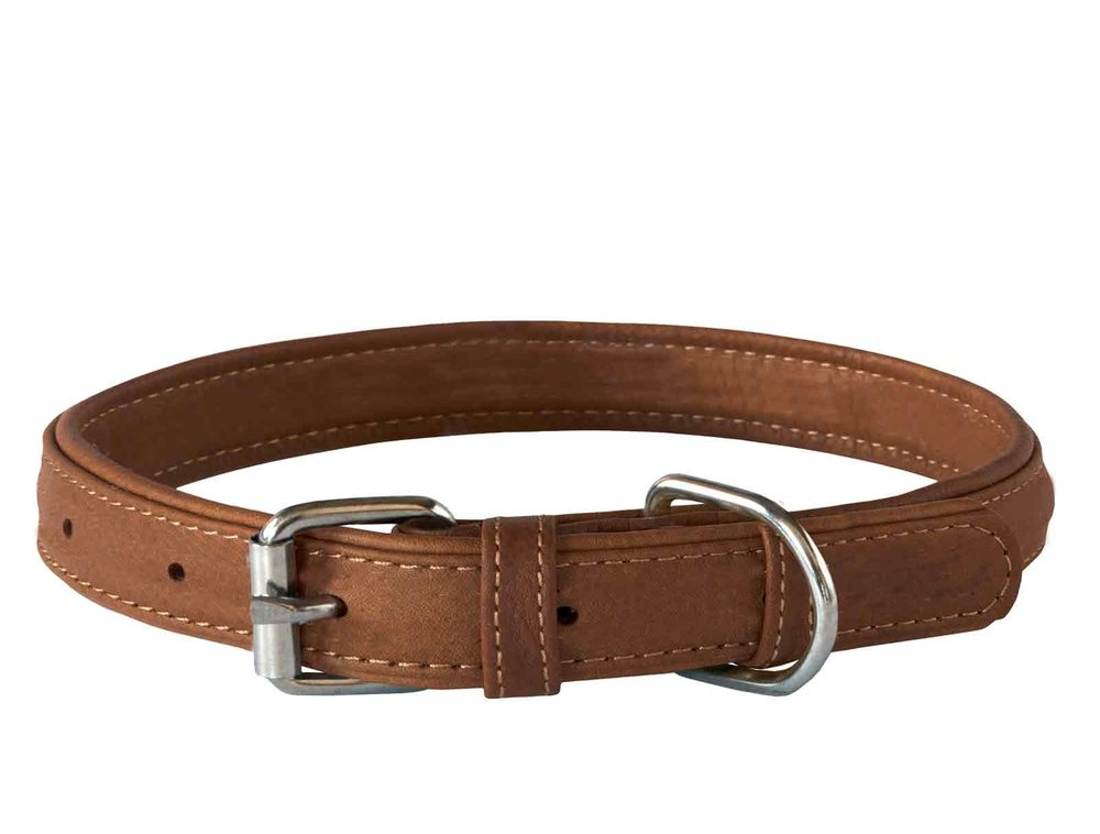 The Flat buckle collar