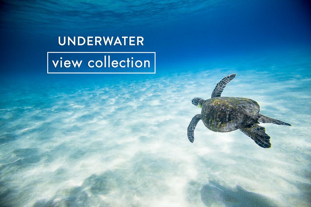 underwater-button-2.jpg