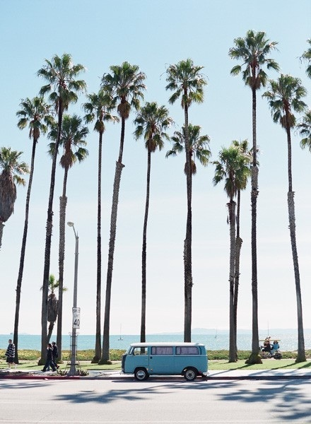 PHOTO FROM http://gap.tumblr.com/post/51163651303/palm-trees-and-80-degrees
