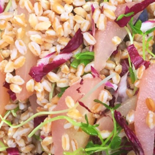 Salad H