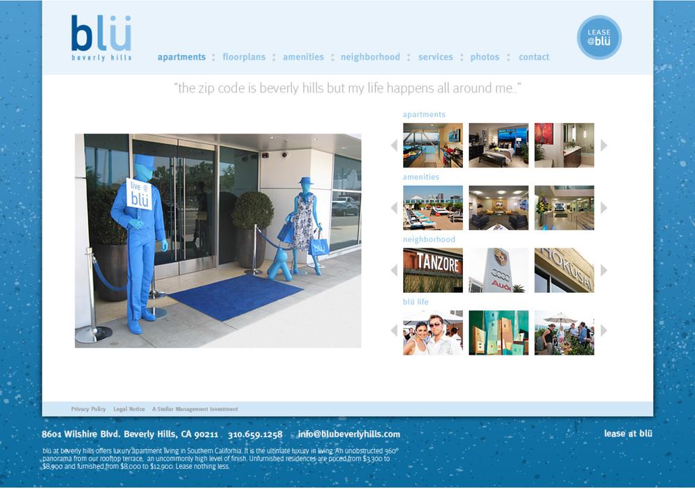 blu_web_03.jpg