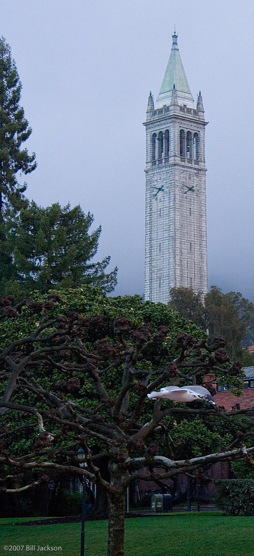 Bell Tower9539.jpg