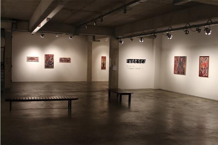 O premiado artista Samuel Casal está com exposição em cartaz na galeria RV Cultura e Arte