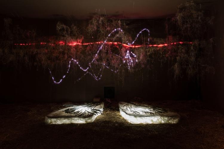 A Bienal de São Paulo é uma das exposições de arte mais importantes do mundo