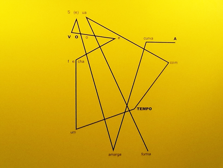 'A Ave' , também de Wladimir Dias-Pino