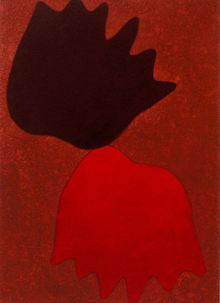 Ela é reverenciada como uma das principais artistas brasileiras do século XX