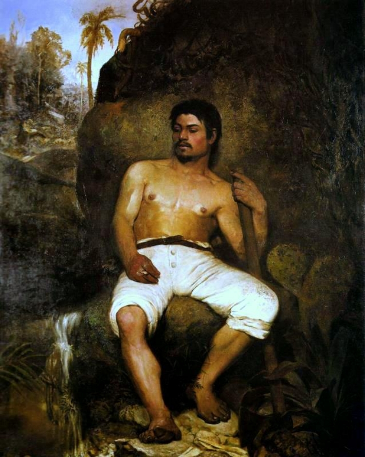 'O Derrubador Brasileiro'  (1879)