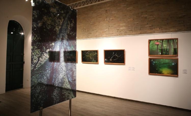A Arte Plural Galeria recebe as fotografias de Helder Ferrer. Fotografia: Hélia Scheppa