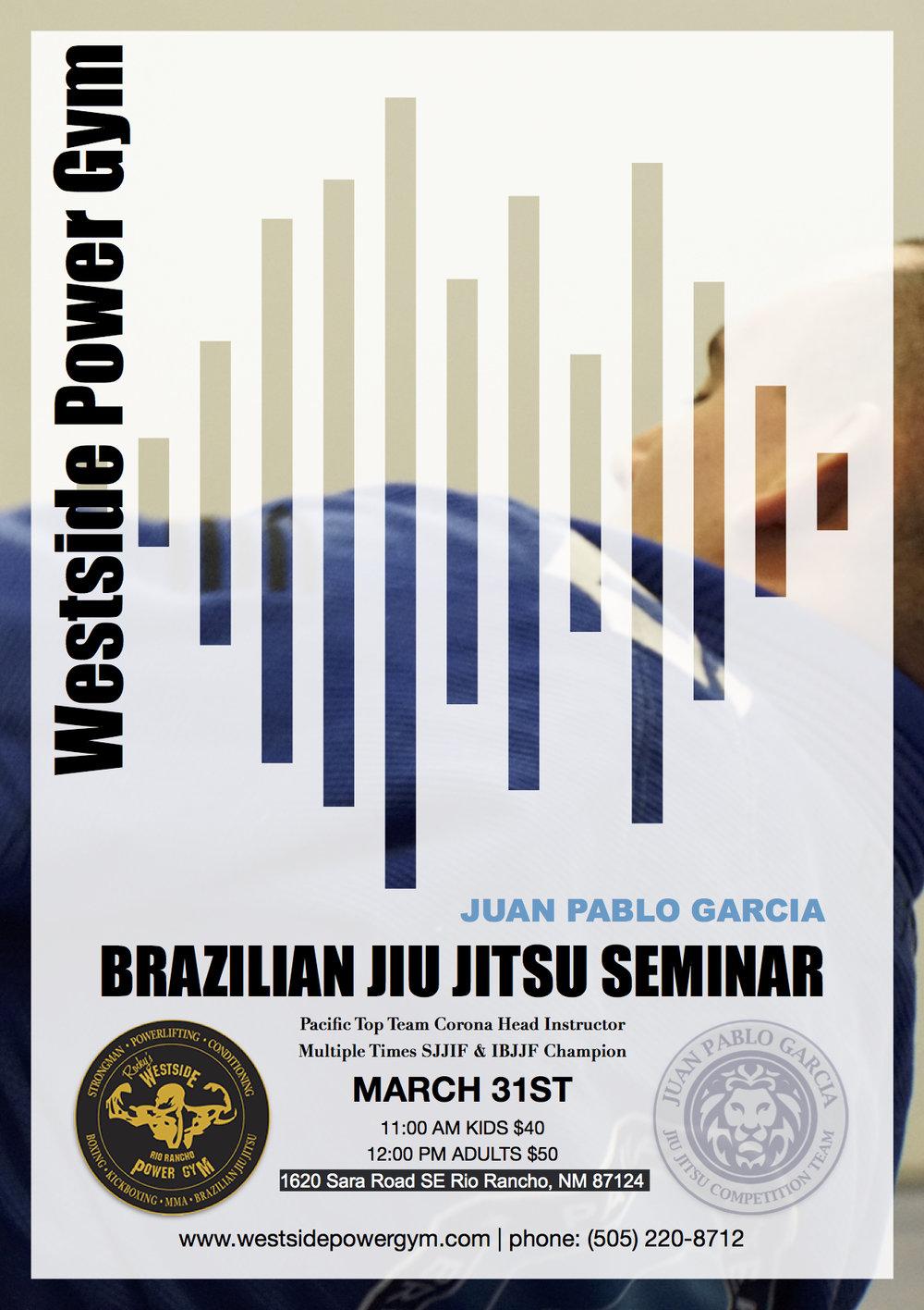 Brazilian Jiu Jitsu Seminar